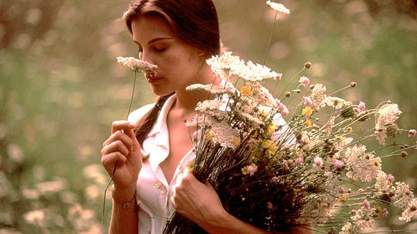 Stealing_beauty_1996_685x3851